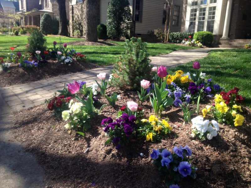 landscaping charlotte nc